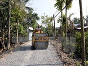 WB helps Vietnam improve transport connectivity, forest protection
