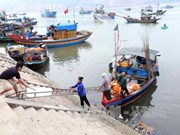 Ha Tinh to complete marine environment incident compensation in June