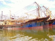 Shipbuilders asked to fix substandard steel fishing boats
