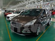 Vietnam's auto industry still very small: working group