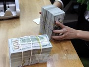 Reference exchange rate goes down by 3 VND