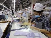 Over 61,000 new enterprises established in six months