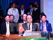 APEC, G20 cooperate in handling global economic issues