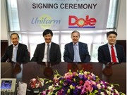Dole names U&I as Vietnam banana distributor