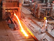 VNSTEEL subsidiaries make profits