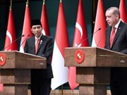 Indonesia, Turkey begin CEPA negotiations