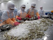 Shrimp export up nearly 16 pct in first half