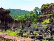 Vietnam strives to preserve My Son heritage site