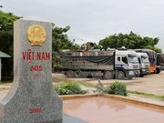 Vietnamese, Lao localities foster cooperation in border management