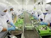 Ca Mau moves to expand shrimp export market
