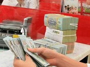 Reference exchange rate goes down 3 VND at week's beginning