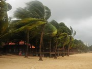 Tropical storm Sonca causes damage across central region