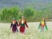 Ha Giang province awaits tourism boom
