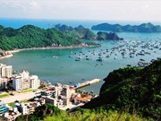 Cat Ba to be eco-smart island