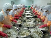 Japanese food companies increase presence in Vietnam