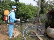 Health Ministry's team inspects dengue fever prevention in Da Nang