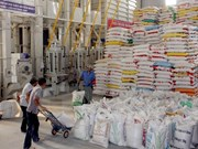 Bangladeshi Embassy informs invitation of tenders for rice import
