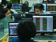 Stocks up on back of blue chips