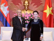Senior legislators pledge to boost Cambodia-Vietnam cooperation