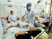 Hanoi works to minimize dengue fatalities