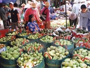 Forum promotes vegetables, fruits trade to China