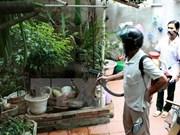 Hanoi sees six dengue fever fatalities