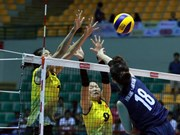 Vietnam lose to RoK in volleyball event