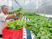 High-tech farming development sluggish