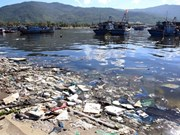 Coastal Da Nang city faces severe pollution problems