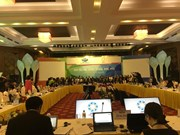 APEC groups strengthen coordination in ensuring food security