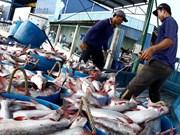 Vietnam, Australia cooperate in combating illegal fishing