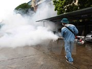 Hanoi: new dengue fever cases drop