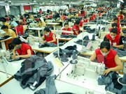 Free trade agreement helps boost Vietnam-EAEU trade
