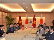Vietnamese official meets Japanese parliament, foreign ministry leader