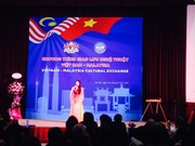 Art performance exchange tightens Vietnam, Malaysia relations