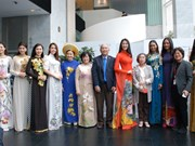 Vietnamese Ao dai enchants Seoul audience