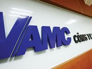 VAMC needs more capital to settle bad debts
