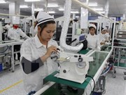 Ha Nam exerts efforts to draw more investment