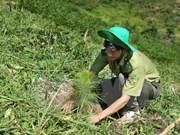 Nghe An develops biosphere reserve