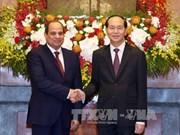Vietnamese, Egyptian Presidents hold talks