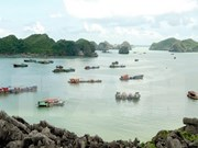 Vietnam to serve 13 million foreign tourists in 2017
