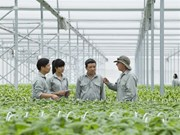 Vietnam seeks global help to lift agriculture sector