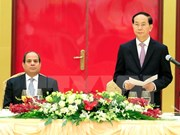 Egypt willing to enhance ties with Vietnam: President
