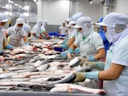 Tra fish fair to take place in October