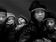 Vietnamese photographer wins FIAP's gold medal
