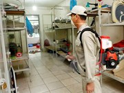 Dengue fever cases nationwide fall