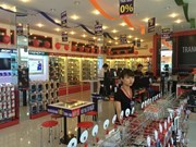 Vietnam posts 11.5 percent IT revenue growth