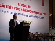 Denmark ready to help VN in sustainable energy development