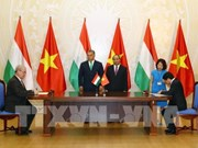 Vietnam, Hungary seek stronger agriculture partnership