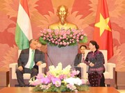 Hungary willing to share e-government building experience with VN